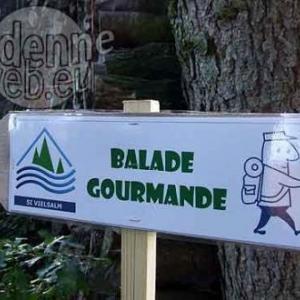 balade gourmande en Val de Salm