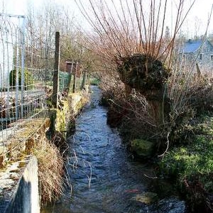 Epuration des eaux usees en zone rurale.