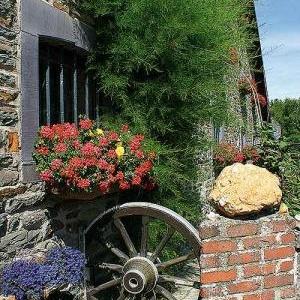 Concours entente florale europe - 3356