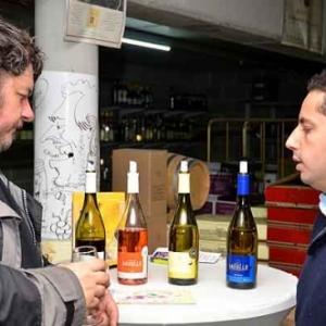 Degustation gratuite de vin-7249