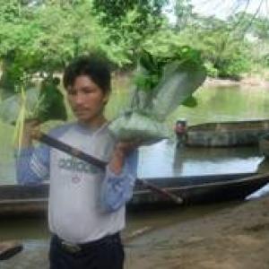 La Frontière  de Vie Pour aider le  peuple de Sarayaku à préserver ses traditions et la forêt  amazonienne !
