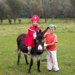 Aiseau le village de Saint-Nicolas