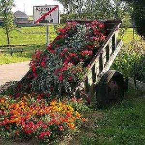 Concours entente florale europe - 036