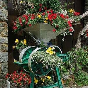 Concours entente florale europe - 3732