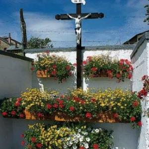 Concours entente florale europe - 3420