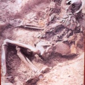 Decouverte d'un squelette
