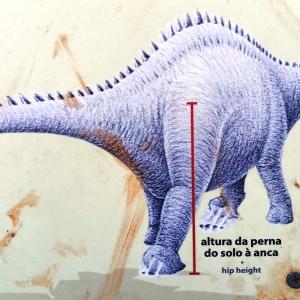 Le site des dinosaures ( Photo F. DETRY )
