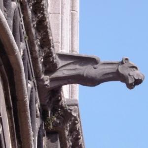 Une des gargouilles de la cathedrale