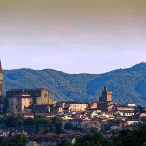 14. Arezzo