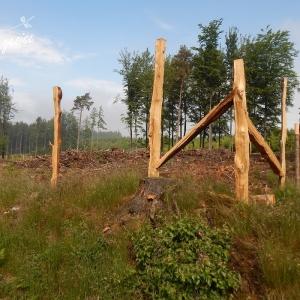 Mise en place d'une cjlôture pour un exclos