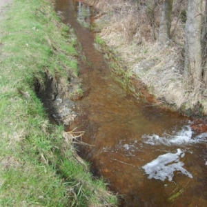 Reparation et protection de la berge du Barechin dont l' erosion menacait un chemin pres de Ville du Bois / Vielsalm (DST Province Luxembourg)