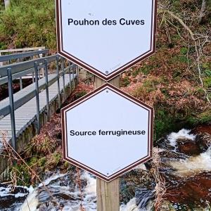 Le Pouhon des Cuves ( Photo Detry