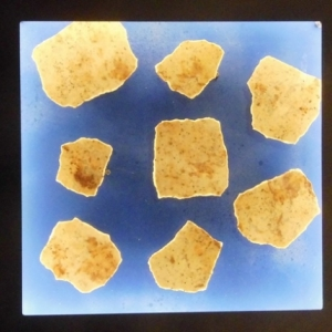 HUPPERTZ Norbert Meteorites