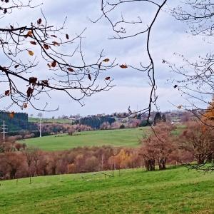 Montée vers G'Doumont : la chapelle de Chôdes est visible au loin