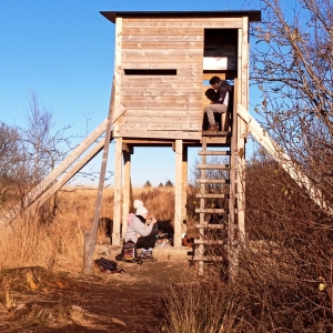 Un observatoire