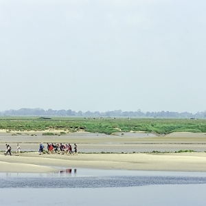 2 Baie de Somme (Somme)