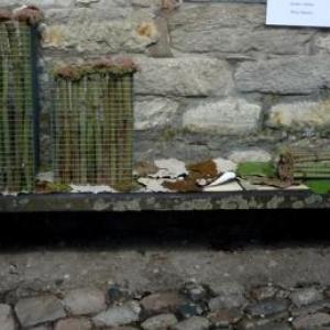 La Halle de Gretedar garnie par la delegation de Liege