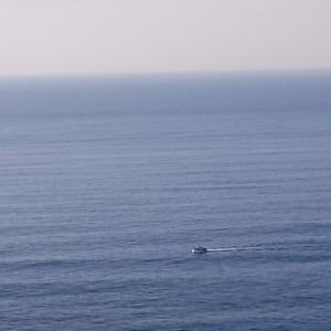 Seul devant l'immense étendue ( Photo F. DETRY )