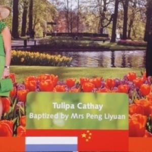 """M. ( Premier Ministre chinois ) et  Mme PENG LIUYAN venue baptiser la """"Tulipa CATHAY """""""