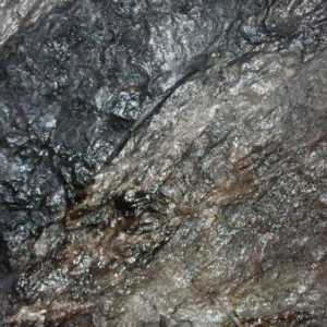 La roche humide