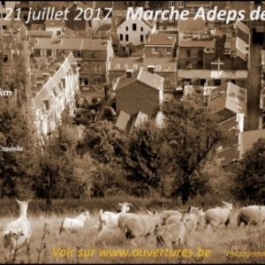 Quatrième édition de la Marche des Terrils 2017