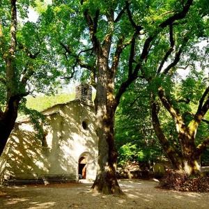 6 Abbaye Notre-Dame-de-Lure