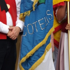 Cotelis