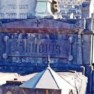 9) Famille Simonis, alliée à la Famille de Biolley  (Photo F. Detry )