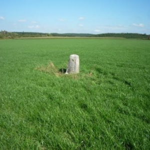 Borne - frontiere au milieu des champs ( cote Hachiville - GD Luxembourg )