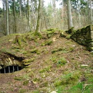 Bezonvaux : cave d'une habitation