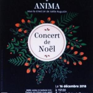 Concert de Noël du ROYAL VALEUREUX LIEGEOIS & de ANIMA
