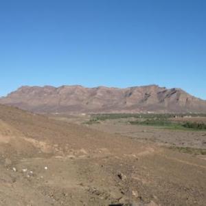 Une oasis dans la vallee du Drâa