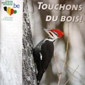 Brochure 4 : Touchons du bois