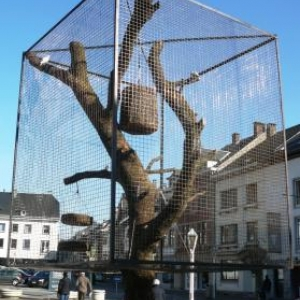 L'arbre a voliere
