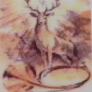Saint Hubert :  Patron de l'Ardenne et des chasseurs