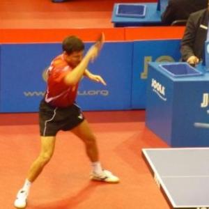 Liège : top 12 européen de tennis de table.