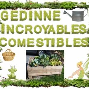 """Diner des associations """"Incroyables Comestibles"""", """"Repair Cafe"""" et """"Gedisel"""", de Gedinne"""