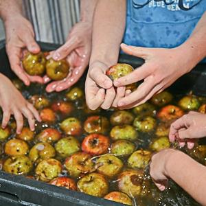 Jus de pommes Gedinne Ecolo