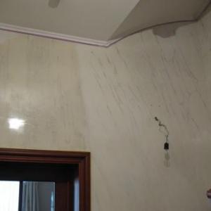 Creation des veines sur murs 1er etage.