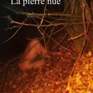 La pierre nue de Daniel Haidon – Editions Baudelaire.