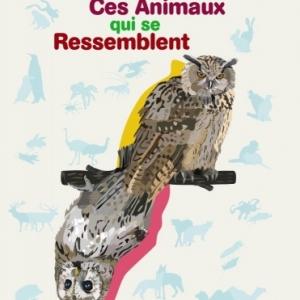 Ces animaux qui se ressemblent de Sylvie Bednar et  Annick Mangard    Casterman.