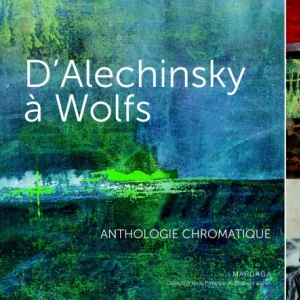 Alechinsky a Wolfs  Editions Mardaga.