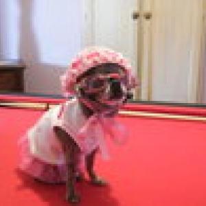 chiwa avec sa robe ete et ses lunettes