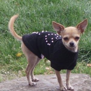 laly en garde robe paris