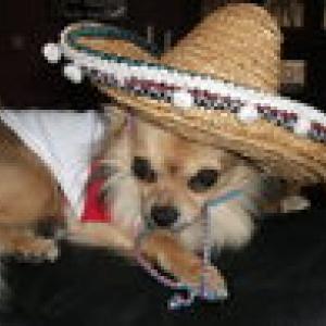 noa superbe avec son chapeau mexicain