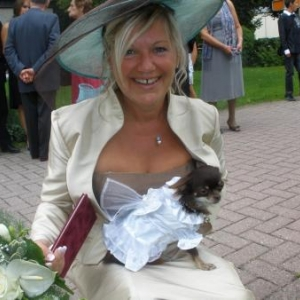 Laika la femelle chihuahua en robe de mariee de madame Bidaine