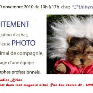 Invitation a la journee photo du 20 novembre 2010