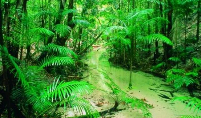 (c) Tourism Queensland - Photographer Peter Lik
