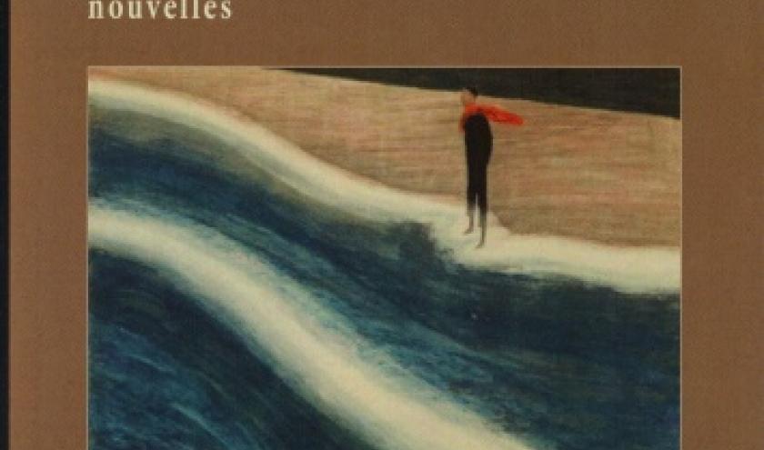 UN BELGE AU BOUT DE LA PLAGE,  de Michel Ducobu