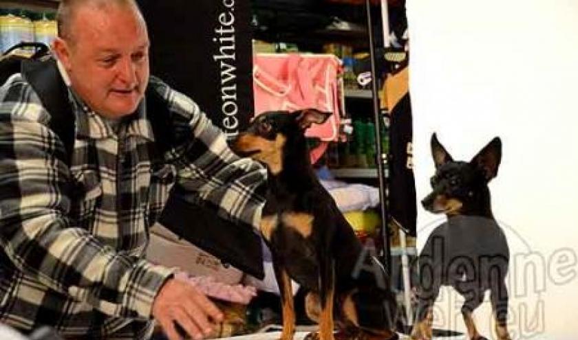 concours du plus beau chien du monde - video 02